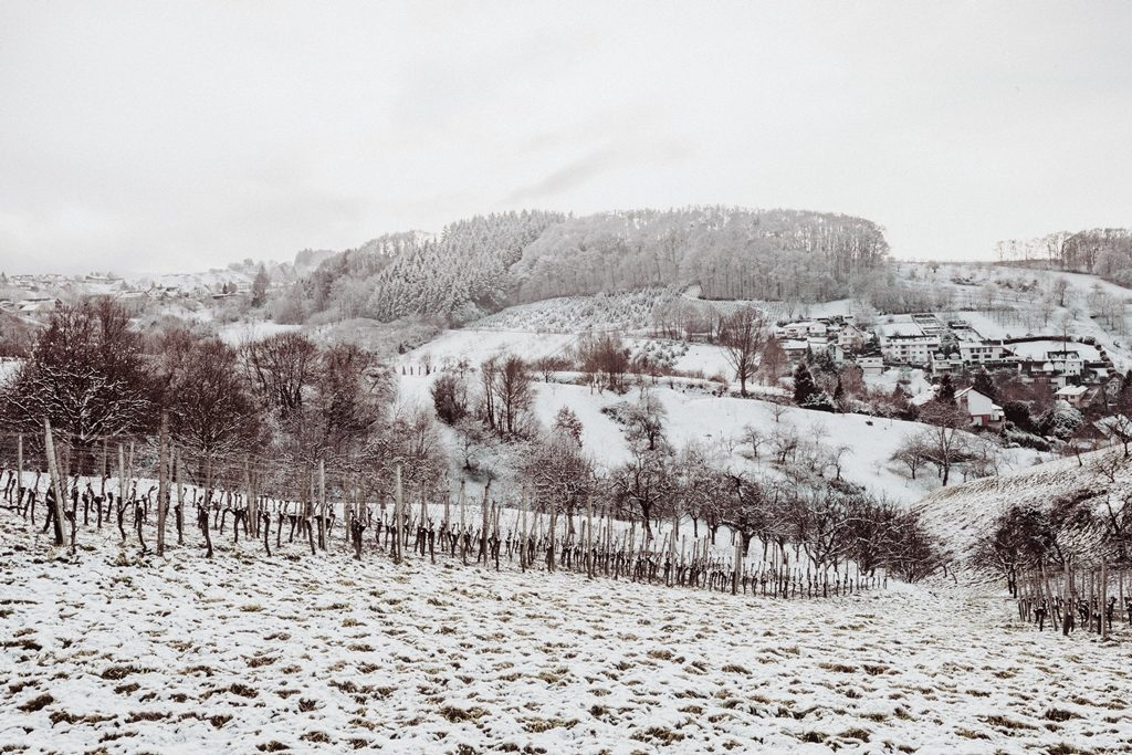 001-diana-tischler-fotografie-winterland