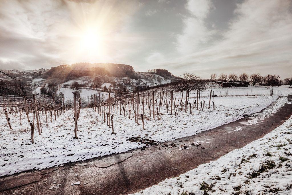 004-diana-tischler-fotografie-winterland