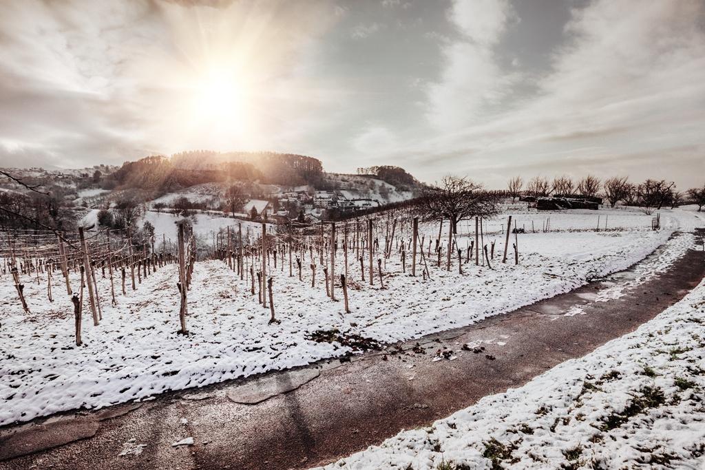 Winter in Kappel