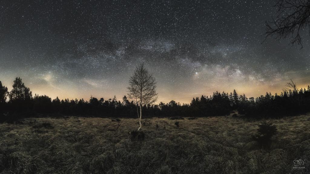 Black Forest Milky Way