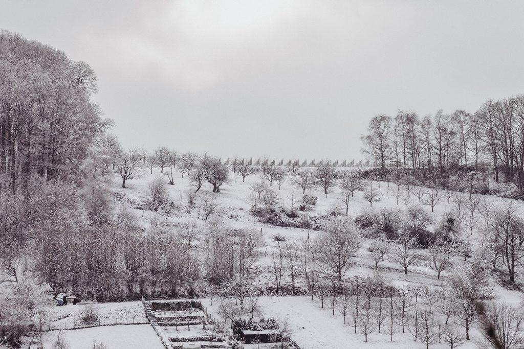 006-diana-tischler-fotografie-winterland