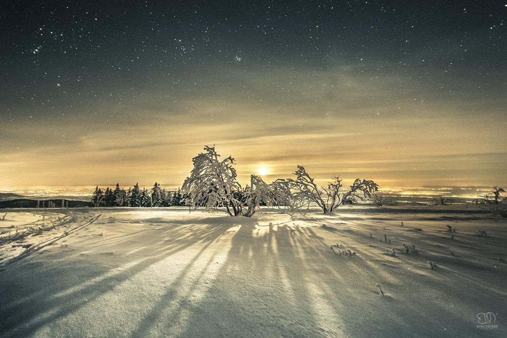 012-diana-tischler-fotografie-nachthimmel