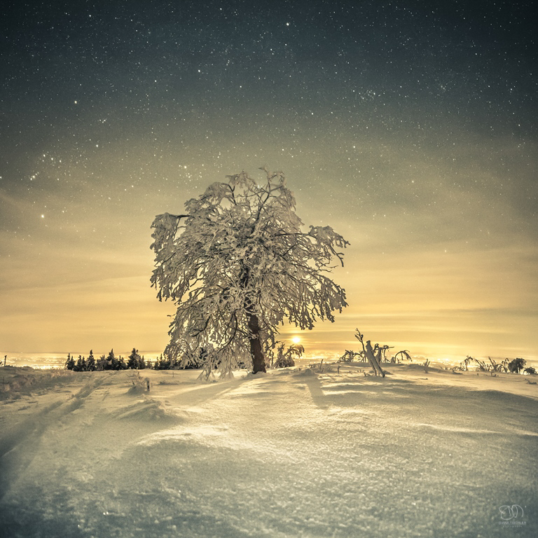 Winter night in Black Forest